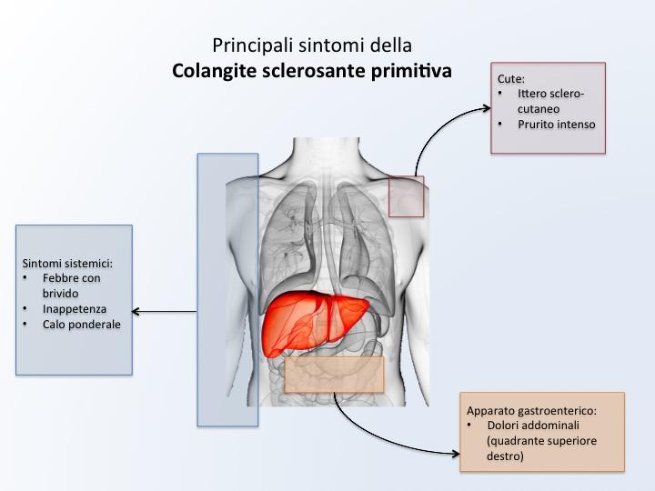 dieta per epatite autoimmune
